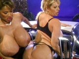 Tieto lesbičky zbožňujú svoje obrie prsia - freevideo